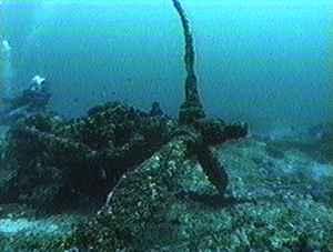 http://www.pacificwrecks.com/aircraft/p-40/A29-110/p40.jpg